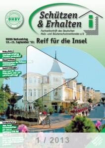 Ausgabe 1 - 2013